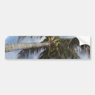 Palm Tree at the Blue Lagoon Bumper Sticker