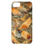 Palm tree bark natural texture iPhone 5C covers