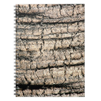 palm tree bark neat wood  tree texture image notebook