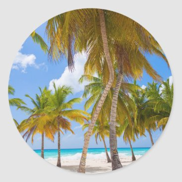 Palm Tree Beach Coast Ocean Blue Sky Sticker