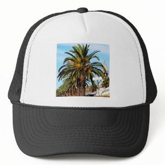 """""""Palm"""