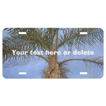Beach Themed Palm Tree Blue Sky Front License Plate