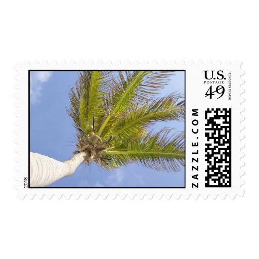 Palm Tree by the sea Postage Stamps