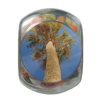 Palm Tree Glass Candy Jars