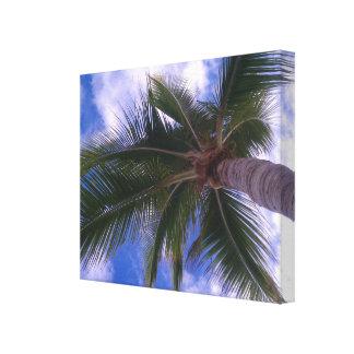 Palm Tree Canvas Wall Art