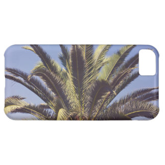 Palm Tree iPhone 5C Cover