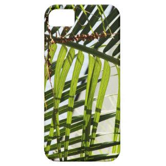 Palm Tree Case