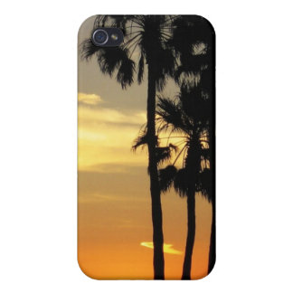 Palm Tree Case iPhone 4/4S Cover
