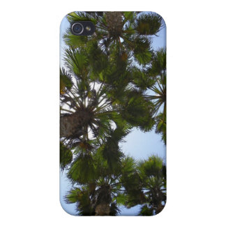 Palm Tree Case iPhone 4 Cases