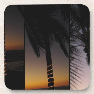 Palm Tree Collage Coaster