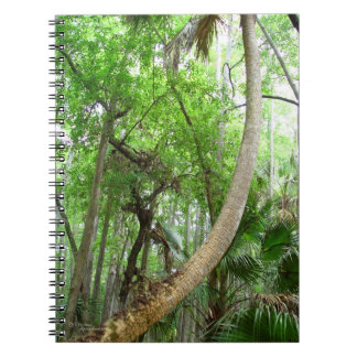 Palm tree Cypress swamp forest Notebook