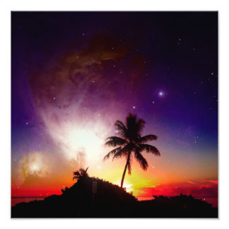 "Palm Tree Dreams - 6"" x 6"" photographic print"