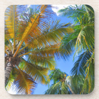 Palm tree drink coaster