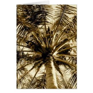 Palm Tree Fan Card