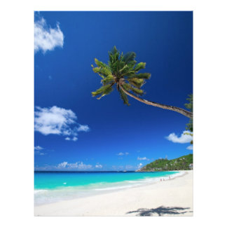Palm tree flyer