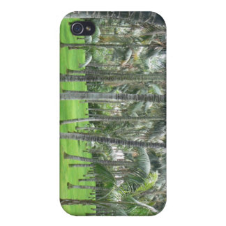 Palm Tree Forest iPhone Case