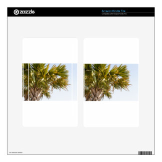 Palm Tree from the East Coast famous Myrtle Beach Skins For Kindle Fire