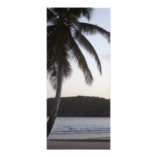 Palm Tree Greeting Rack Card