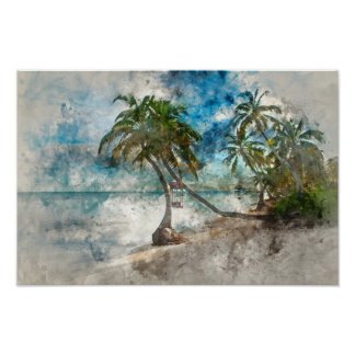 Palm Tree in Ambergris Caye Belize Poster