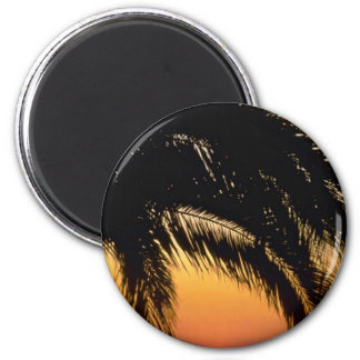 Palm Tree In Late Afternoon 2 Inch Round Magnet