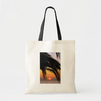 Palm Tree In Late Afternoon Budget Tote Bag