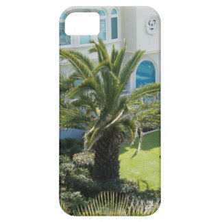 Palm Tree in Oceanside, CA iPhone 5 iPhone 5 Covers