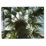 Palm Tree in The Sky Dry-Erase Whiteboards