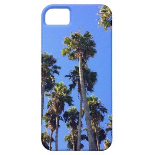 Palm Tree iPhone5 case