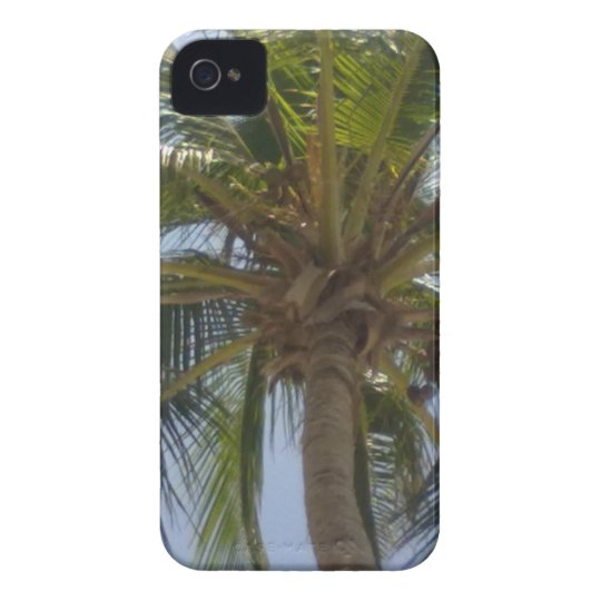 Palm Tree iPhone 4/4S CaseMate Cases