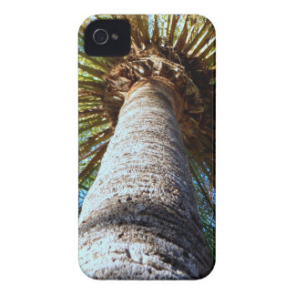 Palm Tree iPhone 4 Cases