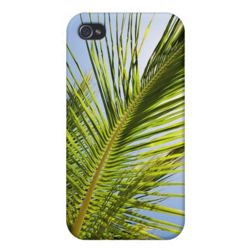 Palm tree iPhone case Case For iPhone 4