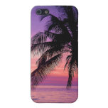 Palm Tree Iphone Case iPhone 5 Case