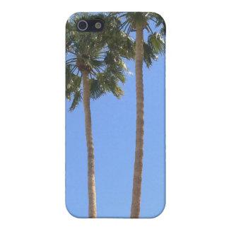 Palm Tree iPhone/iPod Case