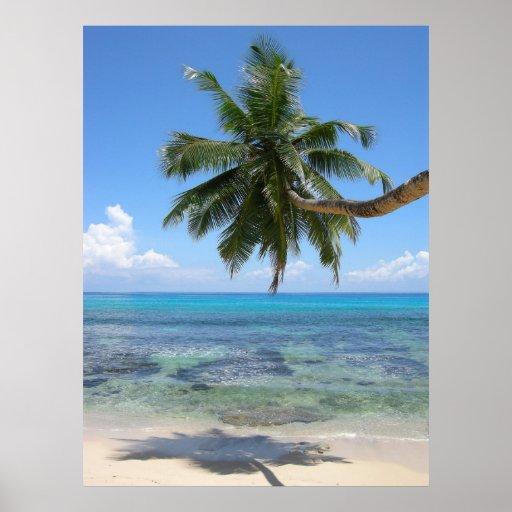 Palm Tree Island Posters