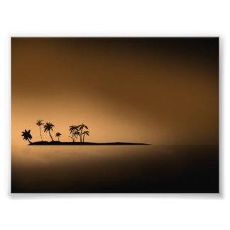 Palm-tree-island-sunset1432 GOLDEN PALM ISLAND SUN Photo Print