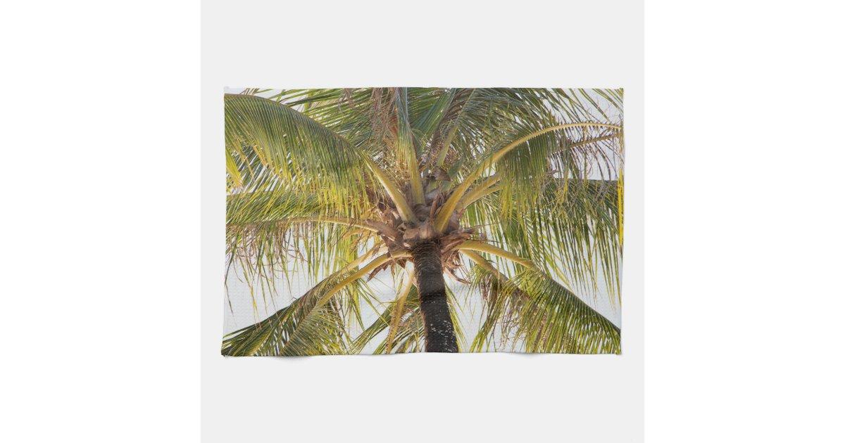 Palm Tree Kitchen Towels