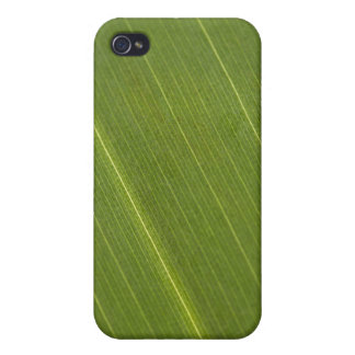 Palm Tree Leaf iPhone 4 Case