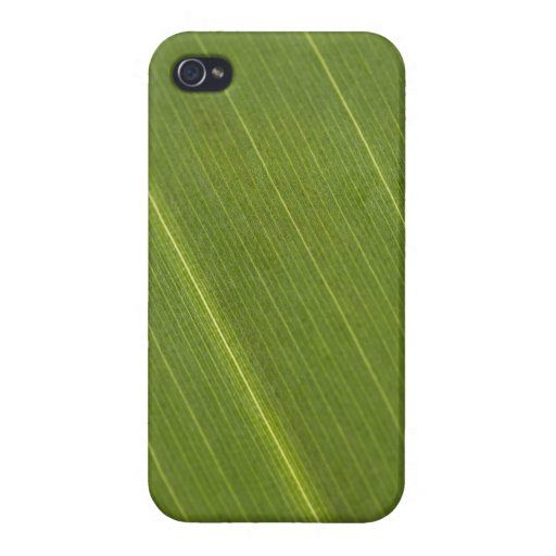 Palm Tree Leaf iPhone 4 Cover