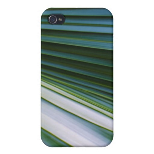 Palm Tree Leaf iPhone 4 Cases