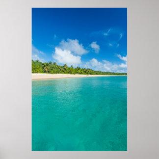 Palm tree lined beach, Tonga Poster