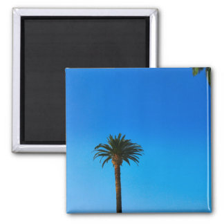 Palm Tree Refrigerator Magnet