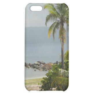 Palm Tree Montego Bay Jamaica iPhone 5C Cases