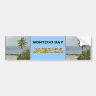 Palm Tree, Montego Bay Jamaica June 2011 Bumper Sticker
