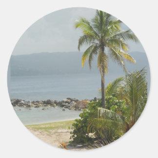 Palm Tree, Montego Bay Jamaica June 2011 Classic Round Sticker