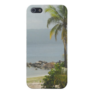 Palm Tree, Montego Bay Jamaica June 2011 Cover For iPhone SE/5/5s