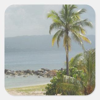 Palm Tree, Montego Bay Jamaica June 2011 Square Sticker