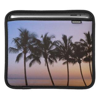 Palm tree, morning sleeve for iPads