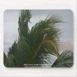 Palm Tree Mousepad Design by JADa Vision