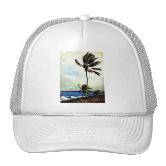 'Palm Tree-Nassau' Trucker Hat