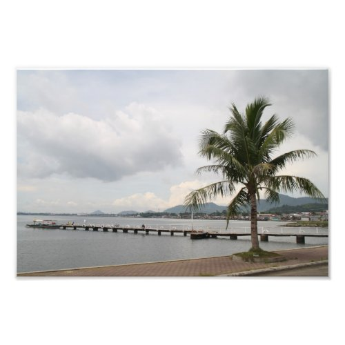 Palm tree on a quay, Tacloban City, Philippines